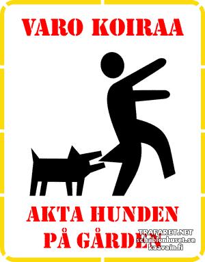 Varo koiraa 01a