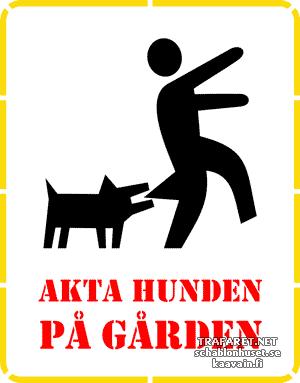 Varo koiraa 01c