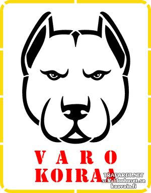 Varo koiraa 02a