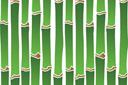 Бамбуковые обои 1
