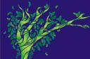 Волшебный лес 1