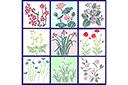 Набор цветов 52