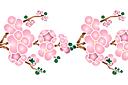 Ветка сакуры в цвету В