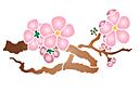 Ветка сакуры с цветами А