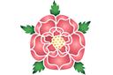 Шиповник в розах 1