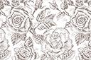 Большие розы 79в